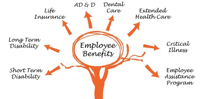 Employee Benefits Plan Options